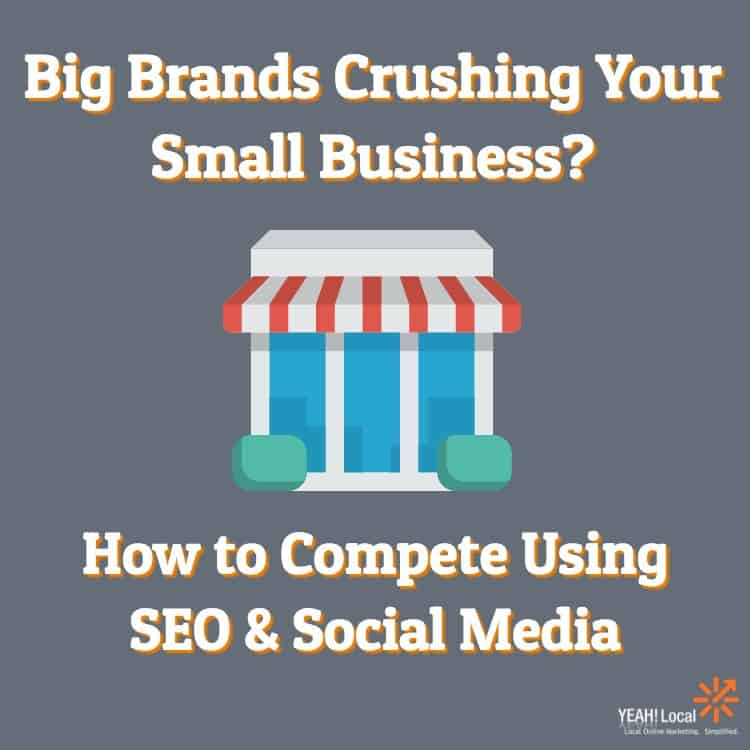 Big Brands Crushing Your Business? Compete Using SEO & Social